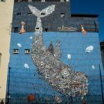 Life Below Water, a Torino Mr. Fijodor realizza il 14esimo Global Goal dell'ONU